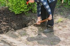Pensionär, der ein Gartenbett gräbt stockfoto