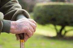 Pensionär och rotting Arkivfoto