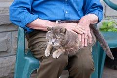 Pensionär som daltar en katt fotografering för bildbyråer