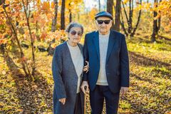 Pensionäre in der Sonnenbrille in den Herbstwaldpensionären wie Gangstern lizenzfreie stockfotos