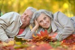 Pensionären kopplar ihop parkerar in Fotografering för Bildbyråer