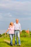 Pensionärer i sommar som går handen - in - hand Royaltyfri Foto