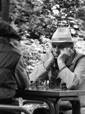 Pensionärer som spelar schack Arkivbild