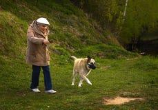 Pensionärfrau mit Hund im Park Stockbilder