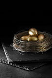 Pension Nest Egg Royalty Free Stock Images