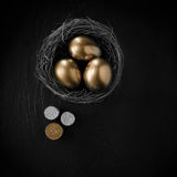 Pension Nest Egg III. Creatively lit stylish concept image for pension nest egg or investment. Golden eggs placed in a birds nest with stacked coins against Stock Image