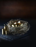 Pension Nest Stock Image