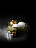Pension Plan Funding. Concept image for mixed asset pension financial management. Mixed gold and white goose eggs in a grass birds nest with stacked coins Stock Images