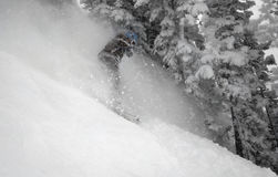 pensionante #5 della neve della donna nell'azione Immagine Stock