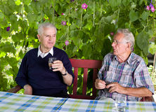 pensionati Immagini Stock Libere da Diritti