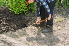 Free Pensioner Digging A Garden Bed Stock Photo - 115034570
