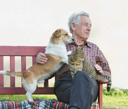 Pensioner with his pets stock photo