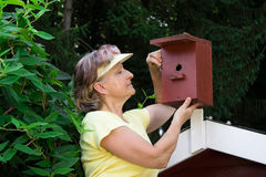 Pensioner with a nest box. Pensioner looking in a nest box Royalty Free Stock Photography