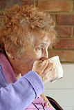 Pensioner teatime. Photo of elderly lady enjoying her cup of tea in home where she lives Royalty Free Stock Image