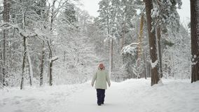The pensioner in the wood on walk. The woman enjoys the long holiday walking  a footpath.   the snow-covered  is very us stock video