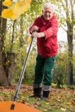 Pensioner working in garden Stock Images