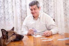 Pensionerad man som spelar kort, klockor för hund för tysk herde Fotografering för Bildbyråer