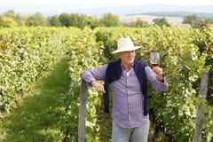 Pensionerad vinproducent Royaltyfri Fotografi