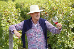 Pensionerad vinproducent Arkivbild