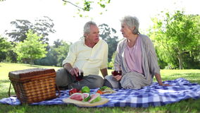 Pensionerat folk som har en picknick tillsammans lager videofilmer