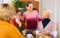 Pensioners having cup of tea Royalty Free Stock Photo