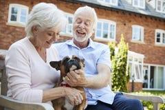 Pensionierte Paare, die auf Bank mit Haustier-französischer Bulldogge in der Anlage des betreuten Wohnens sitzen stockfotografie