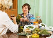 Pensionista dois maduro com ervas Fotos de Stock