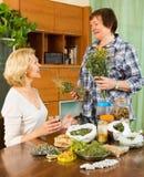 Pensionista dois maduro com ervas Fotos de Stock Royalty Free