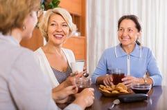 Pensionista fêmeas que bebem o chá fotografia de stock royalty free