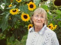 Pensionista sonriente en su jardín con el girasol Fotografía de archivo libre de regalías