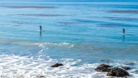 2 pensionistas da pá no Oceano Pacífico Imagens de Stock