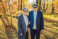 Pensionistas en gafas de sol en los pensionistas del bosque del otoño como gángsteres fotos de archivo libres de regalías