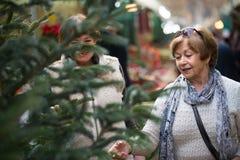 Pensionistas femeninos que compran el árbol del Año Nuevo en la feria Imagenes de archivo
