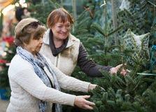 Pensionistas femeninos que compran el árbol del Año Nuevo en la feria Imagen de archivo libre de regalías