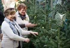 Pensionistas femeninos que compran el árbol del Año Nuevo en la feria Fotos de archivo