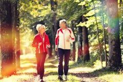Pensionärer som joggar på en skogväg Arkivbild