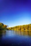 Pensive autumn pond. Stock Photography