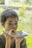 Pensive boy looks at fish bone eaten clearly on plate Stock Photos