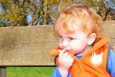 Pensive child Stock Images