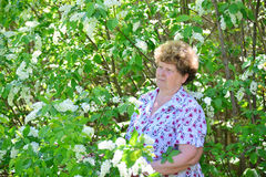 Pensive elderly woman in  spring nature with cherry flowers Stock Images