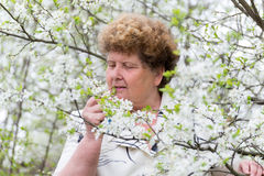 Pensive elderly woman in spring nature with cherry flowers Stock Photo