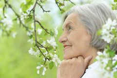 Pensive elderly woman Stock Photo