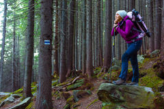 Pensive Female Hiker Staying in Deep Old Forest Royalty Free Stock Image