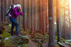 Pensive Female Hiker Staying in Deep Old Forest Royalty Free Stock Photos