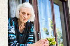 Pensive grandma at the home window. Pensive grandma in her 90s at the home window alone Royalty Free Stock Image