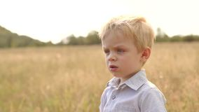 Pensive little boy stands in a field at sunset. Portrait of an emotional boy outdoors in summer at sunset stock video