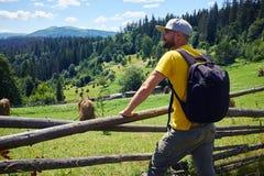 Pensive man admiring mountains. Close-up shot of pensive bearded male hiker admiring mountains Stock Image