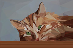 Pensive red cat. In low poly style - Vector illustration Stock Photography