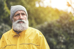 Pensive senior male tourist standing in forest. Portrait of serious old bearded man traveling in wild nature by alone. He is looking forward pensively. Copy Royalty Free Stock Images