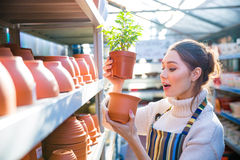 Pensive woman gardener choosing pot for plant in store Stock Photos
